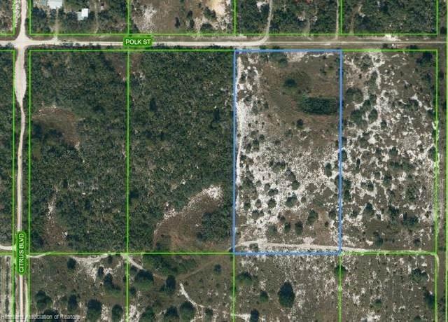 213 Polk Street, Lake Placid, FL 33852 (MLS #281658) :: Compton Realty
