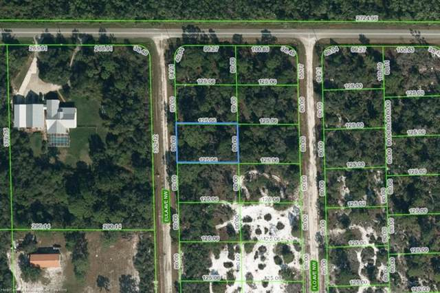 108 Eula Road NW, Lake Placid, FL 33852 (MLS #281836) :: Compton Realty