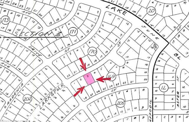 939 Larkspur Street, Lake Placid, FL 33852 (MLS #281837) :: Compton Realty