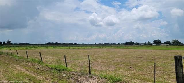 699 Metheny Road, Wauchula, FL 33873 (MLS #281897) :: Compton Realty