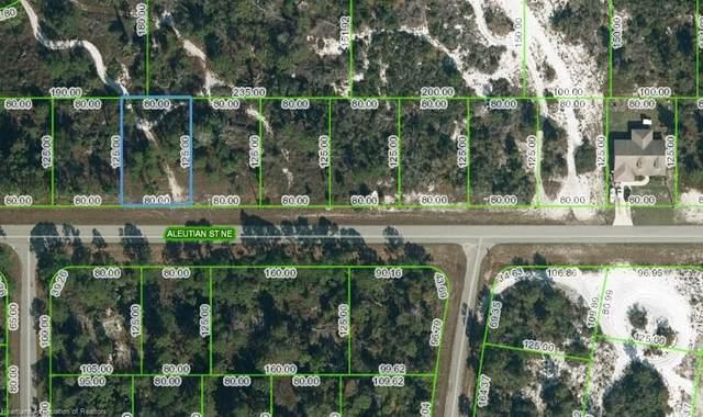 1328 Aleutian Street NE, Lake Placid, FL 33852 (MLS #282048) :: Compton Realty