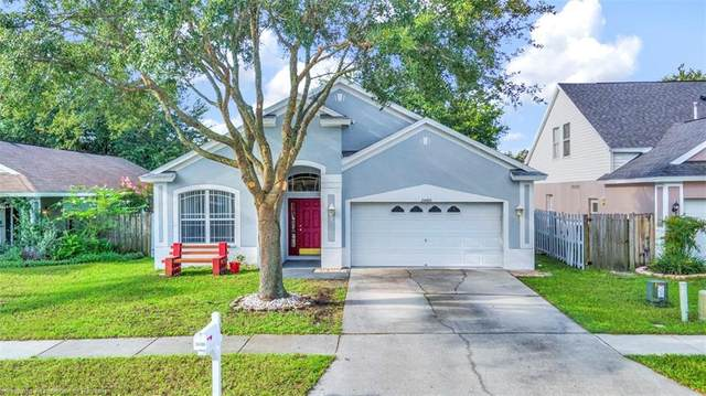 24406 Summer Wind Court, Lutz, FL 33559 (MLS #282054) :: Compton Realty