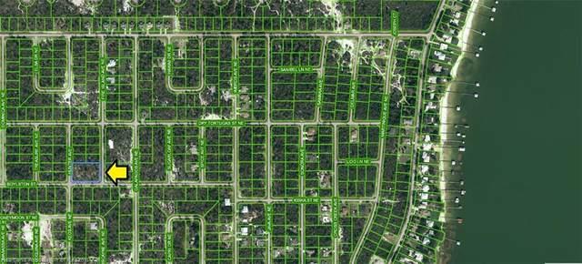 228 Hunter Avenue Avenue, Lake Placid, FL 33852 (MLS #282510) :: Compton Realty