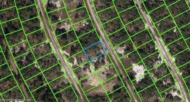 208 Blue Sky Drive, Lake Placid, FL 33852 (MLS #282793) :: Compton Realty