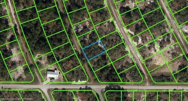 205 Blue Horizon Drive, Lake Placid, FL 33852 (MLS #282795) :: Compton Realty