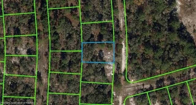 256 Blue Horizon Drive, Lake Placid, FL 33852 (MLS #282796) :: Compton Realty