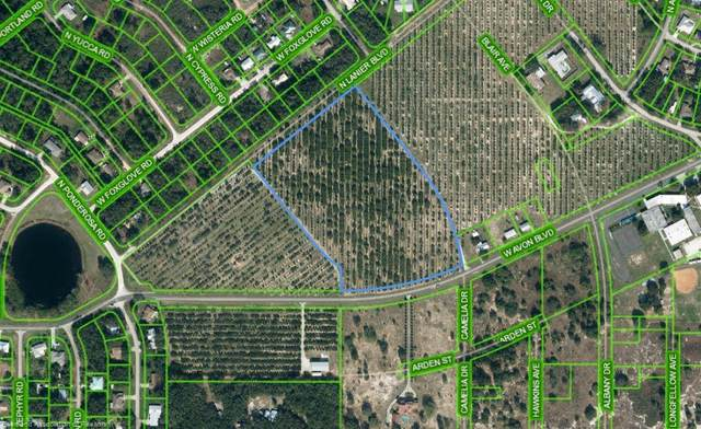 1702 W Avon Boulevard, Avon Park, FL 33825 (MLS #282848) :: Compton Realty
