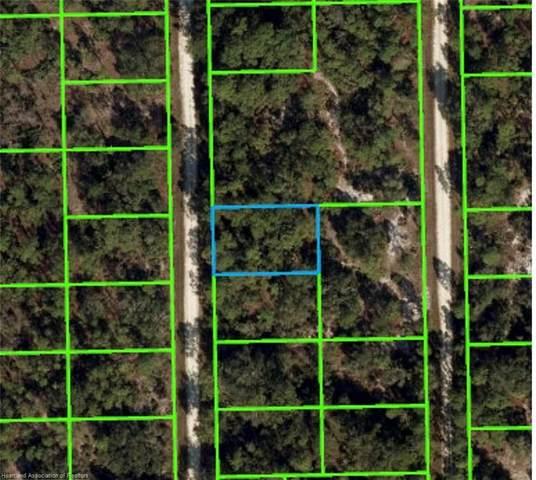 645 Chesley Street, Lake Placid, FL 33852 (MLS #282897) :: Dalton Wade Real Estate Group