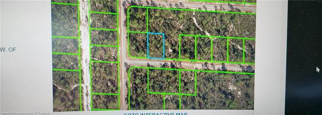 3623 Forrest Point Avenue, Lake Placid, FL 33852 (MLS #282908) :: Compton Realty