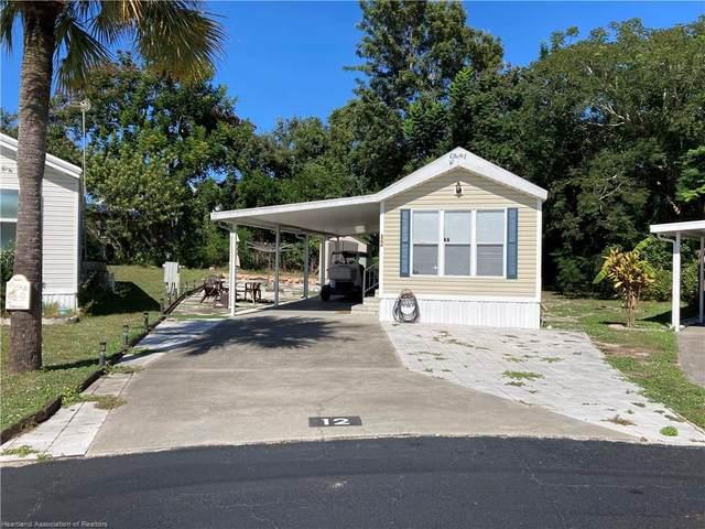 12 Shoreline Court, Lake Placid, FL 33852 (MLS #283135) :: Compton Realty
