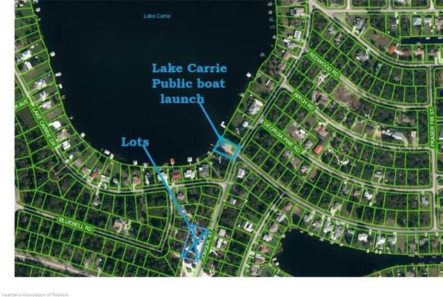 1010 Jonquil Street, Lake Placid, FL 33852 (MLS #283197) :: Compton Realty