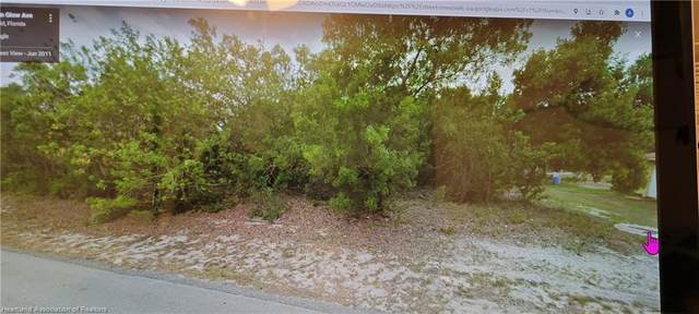 265 Moon Glow Avenue, Lake Placid, FL 33852 (MLS #283383) :: Compton Realty