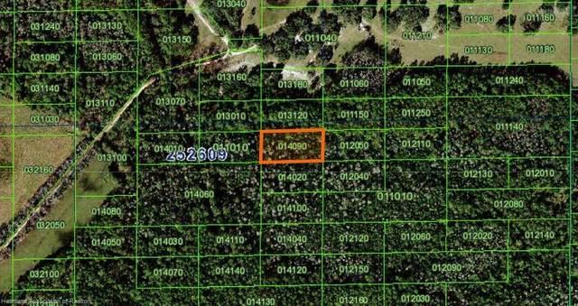 Commonwealth Avenue N, Polk City, FL 33868 (MLS #277391) :: Compton Realty