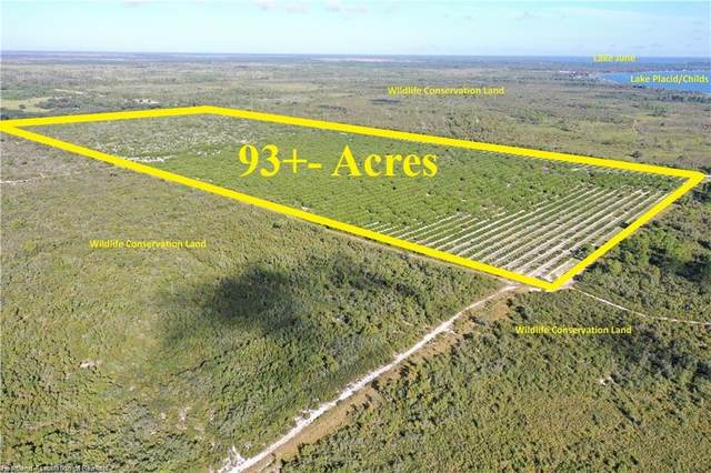 3001 State Road 70 Highway W, Lake Placid, FL 33852 (MLS #283293) :: Compton Realty