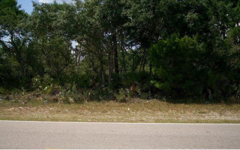 3060 Lake Josephine Drive - Photo 1