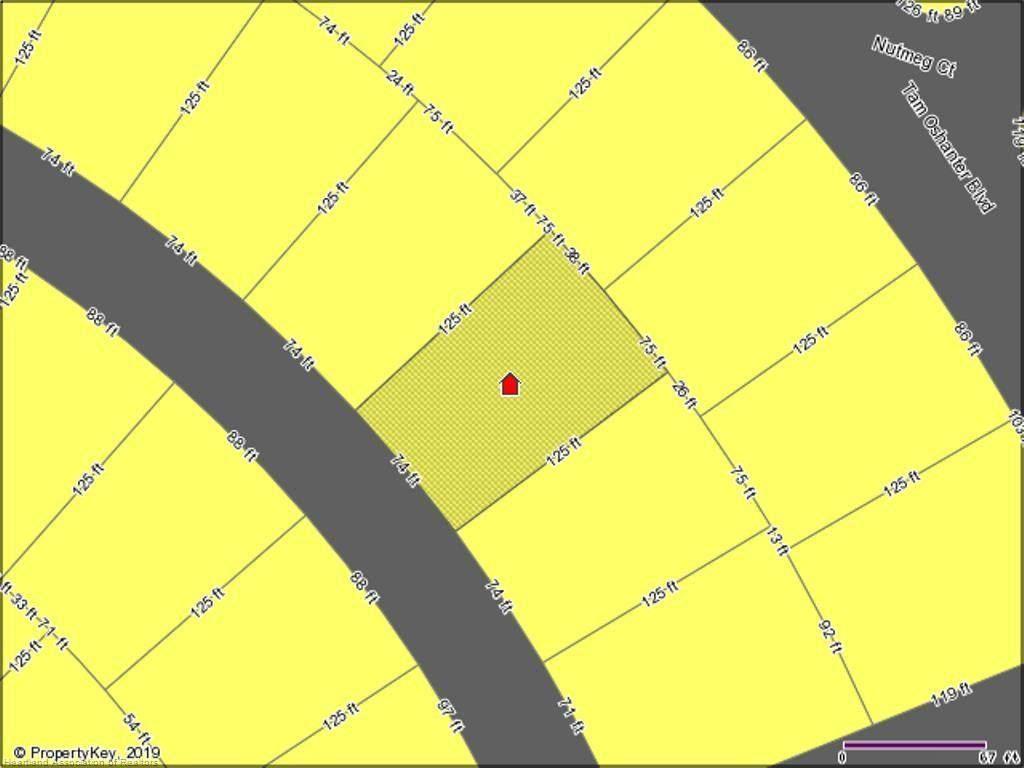 10563 Interlacher Drive - Photo 1