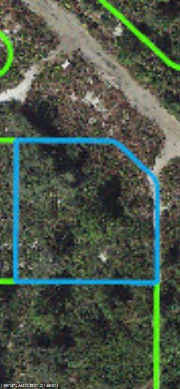 514 Daytona Avenue, Lake Placid, FL 33852 (MLS #271484) :: Compton Realty