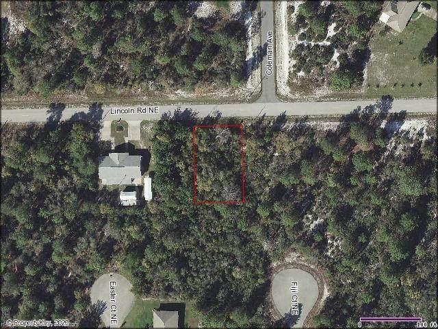 289 Lincoln Road NE, Lake Placid, FL 33852 (MLS #272195) :: Compton Realty