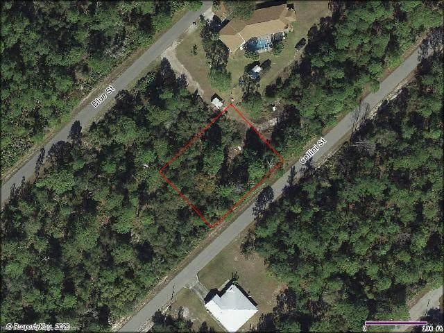 1058 Cellini Street, Lake Placid, FL 33852 (MLS #273914) :: Compton Realty