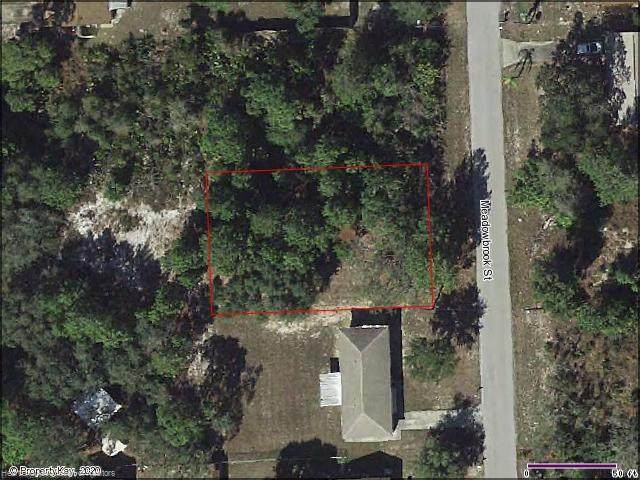 1610 Meadowbrook Street, Lake Placid, FL 33852 (MLS #273926) :: Compton Realty