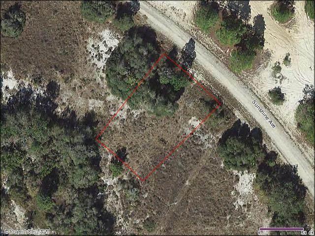 421 Sunshine Avenue, Lake Placid, FL 33852 (MLS #274233) :: Compton Realty