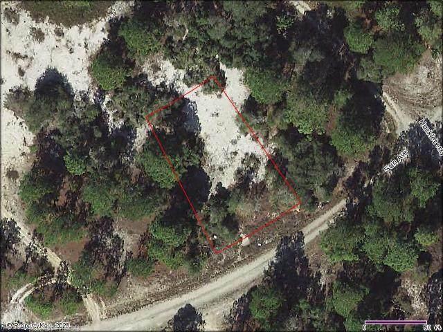 372 Sun Court, Lake Placid, FL 33852 (MLS #274234) :: Compton Realty
