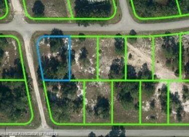 301 Gloria Boulevard, Lake Placid, FL 33852 (MLS #275674) :: Compton Realty