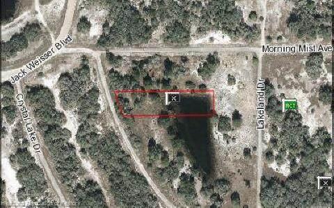 104 Vagabond Avenue, Lake Placid, FL 33852 (MLS #275957) :: Compton Realty