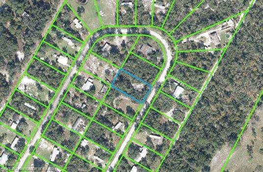 3315 Horseshoe Drive, Avon Park, FL 33825 (MLS #276494) :: Compton Realty