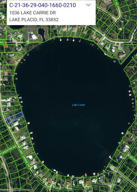 1036 Lake Carrie Drive - Photo 1