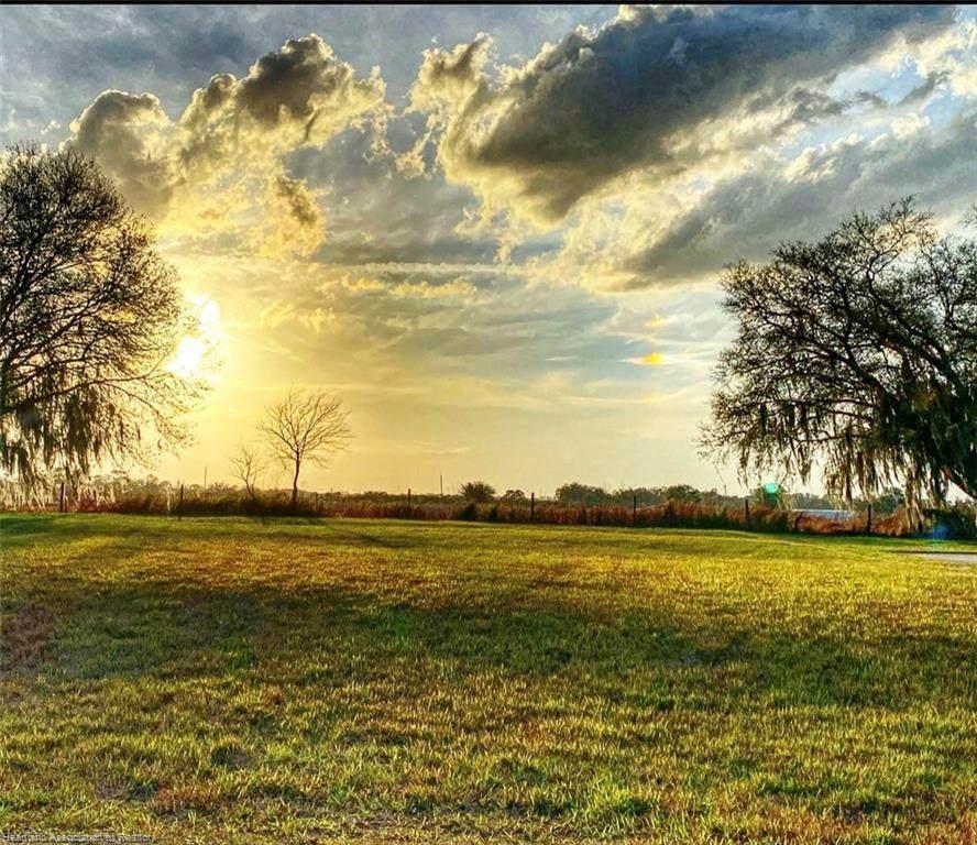 6061 Strafford Oaks Drive - Photo 1