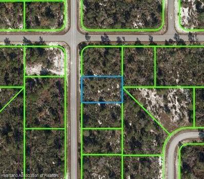 332 Galapagos Avenue NE, Lake Placid, FL 33852 (MLS #277950) :: Compton Realty
