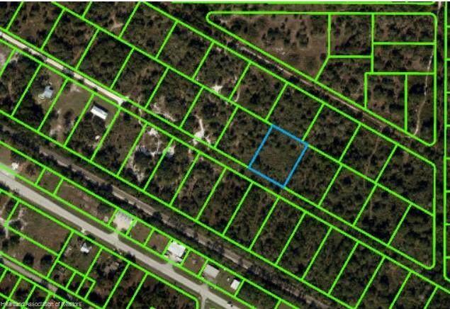 1809 W Lake Drive, Lorida, FL 33857 (MLS #279241) :: Compton Realty