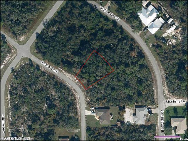 434 Grant Avenue NE, Lake Placid, FL 33852 (MLS #279640) :: Compton Realty
