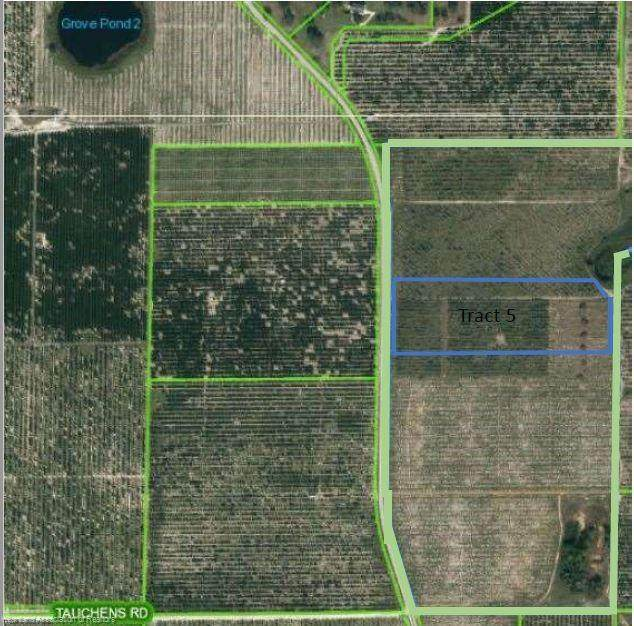 8860 County Road 17 Tract 5 - Photo 1