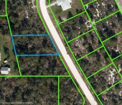 229 Hayes Avenue NE, Lake Placid, FL 33852 (MLS #282435) :: Compton Realty