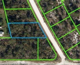 231 Hayes Avenue NE, Lake Placid, FL 33852 (MLS #282436) :: Compton Realty