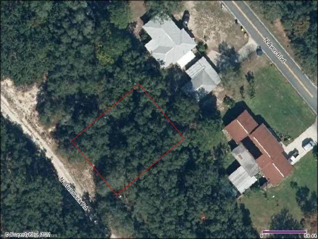 2432 N Brunswick Road, Avon Park, FL 33825 (MLS #282942) :: Compton Realty