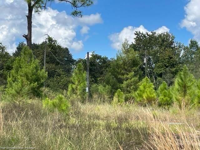 3327 N Horseshoe Drive, Avon Park, FL 33825 (MLS #283215) :: Dalton Wade Real Estate Group