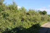 15237 Tolbert Drive - Photo 3