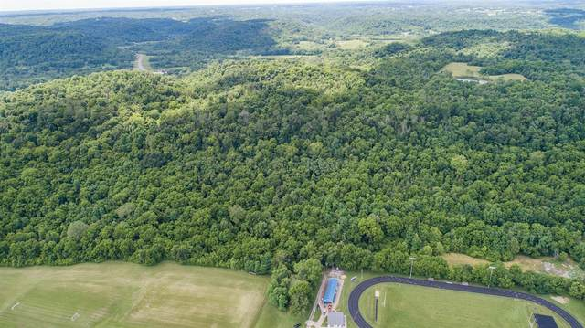0 State Road 56 Street, Vevay, IN 47043 (#195191) :: The Huffaker Group