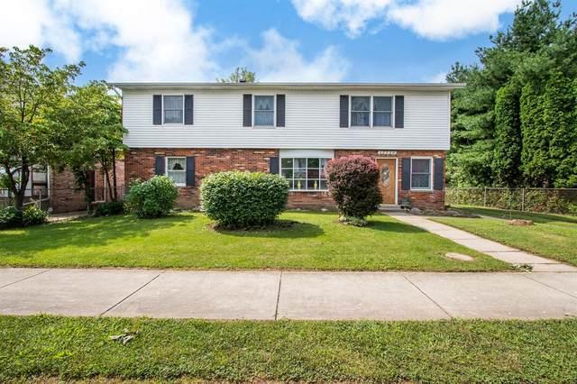 12720 North Street, Dillsboro, IN 47018 (#195420) :: Century 21 Thacker & Associates, Inc.
