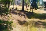 NNA Osprey Circle - Photo 3
