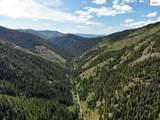 NKA Bear Creek - Photo 1
