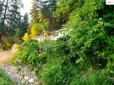 43853 Highway 200 - Photo 35