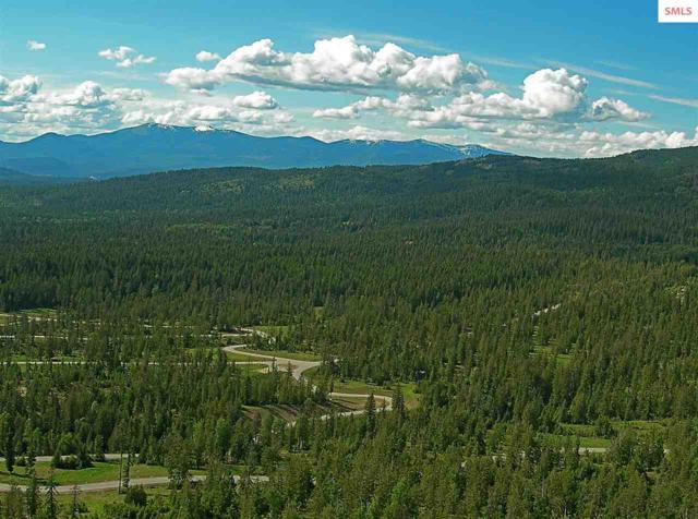 NNN Lolo Trail 9-4, Sagle, ID 83860 (#20183062) :: Northwest Professional Real Estate