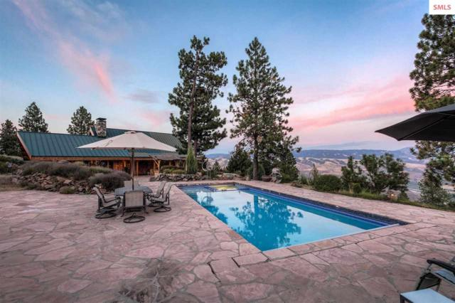 209 Big Canyon Rd, Out of Area, ID 83554 (#20190131) :: Northwest Professional Real Estate