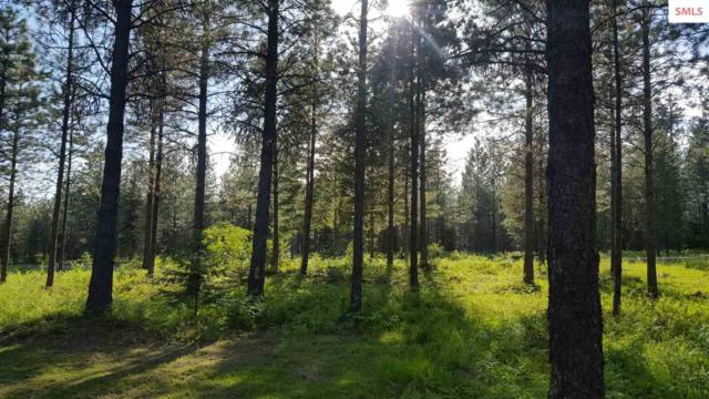 Lot 4 Lake Creek Ranch, Troy, MT 59935 (#20190213) :: Northwest Professional Real Estate