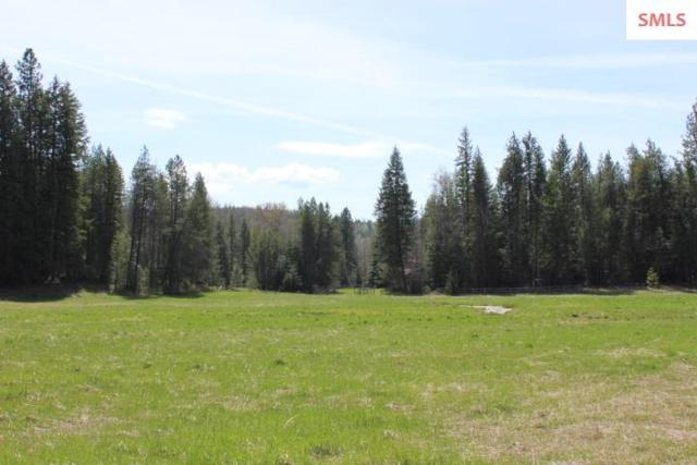 NNA Foothill Road, Athol, ID 83801 (#20191048) :: Northwest Professional Real Estate