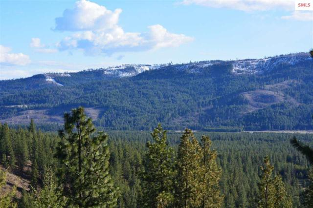 NNA Rogstad Powerline Road, Blanchard, ID 83804 (#20191259) :: Northwest Professional Real Estate